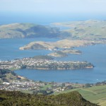 Otago Harbor from Mt Cargill, Dunedin