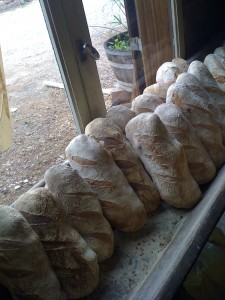 Bread at La Ferme de Gernes
